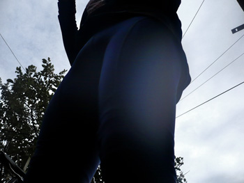 rapha winter tights